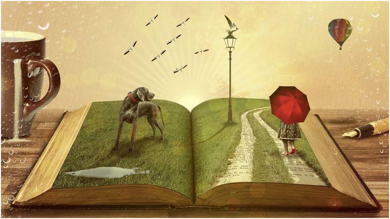 koira kirjan päällä. kuva: Comfreak