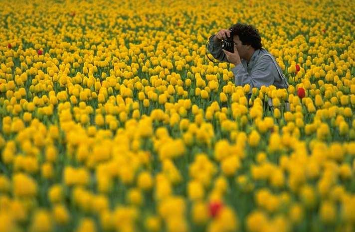 valokuvaaja kukkaniityllä